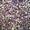 Продам насіння  часнику  #1344620