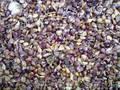 Продам насіння  часнику