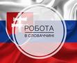 Работа в Словакии по биометрии и на ВНЖ. Без предоплаты в Украине. - Изображение #2, Объявление #1663530